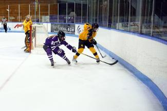 Western Mustangs Women's Hockey