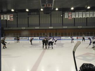 Western Mustangs Men's Hockey