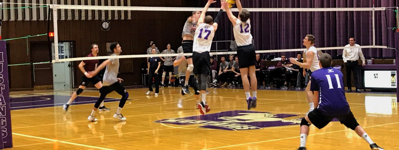 Western blocks McMaster at the net